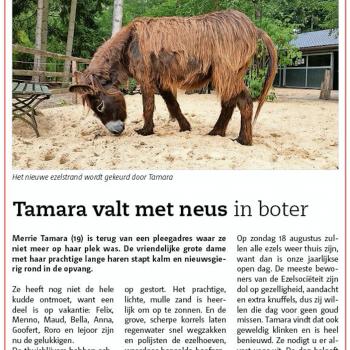 Nieuwsbode: Tamara valt met neus in boter