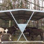 Hooiruif voor de Ezels van de ezelsocieteit gedoneerd gekregen door stichting bouwstenen voor dierenwelzijn