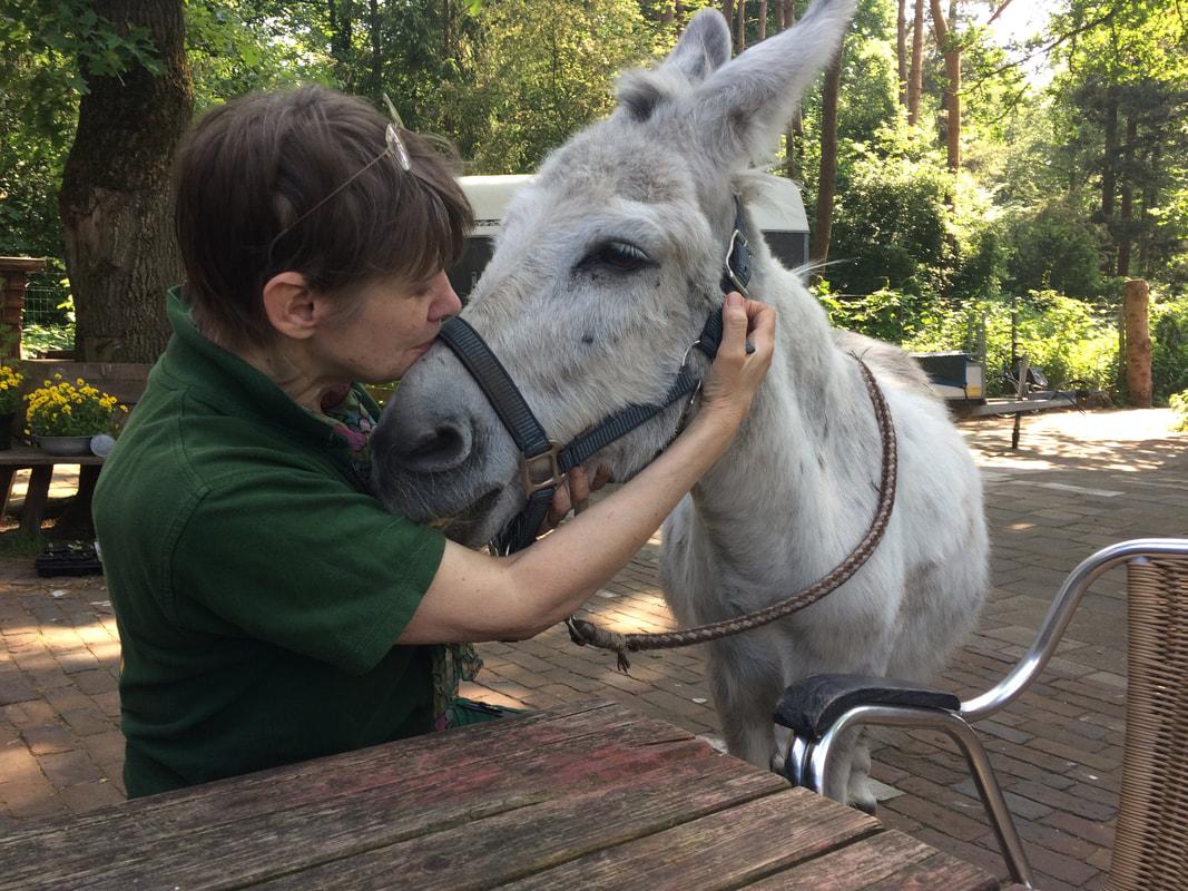 Vrijwilligster Barbara troost ezel Jaap die in de rouw is